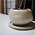 025:植木鉢